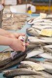Het verkopen verse vissen op Mediterrane vissenmarkt royalty-vrije stock foto's