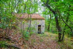 Het verlaten huis in het hout stock afbeelding
