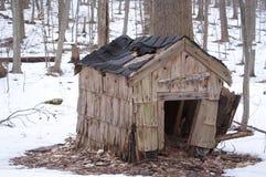 Het verlaten Huis van de Hond Royalty-vrije Stock Foto's