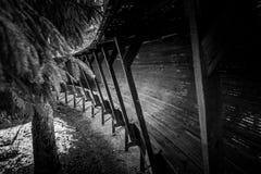Het verlaten luge spoor kronkelt het de manier van ` s door het bos Stock Fotografie