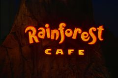 Het verlichte teken van de Regenwoudkoffie bij nacht in het Uitzicht van Meerbuena stock afbeelding