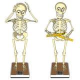 Het verlies van het gewicht, boulimie, anorexie, dieet, manier Stock Afbeelding