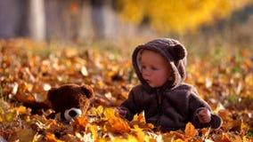 Het vermakelijke baby en teddybeerstuk speelgoed zit op de herfstgebladerte en speelt met bladeren stock video
