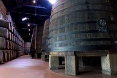 Het verouderen van de wijn van de Haven in kelder Royalty-vrije Stock Afbeelding