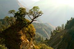 Het verrukte landschap van Nepal royalty-vrije stock foto's