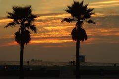 Het Verschepende Goud van de zonsondergang Stock Afbeeldingen