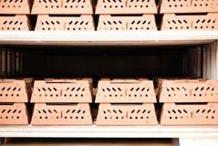 Het verschepende karton van het kuiken stock foto