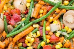 Het verse bevroren voedsel van groenteneco, natur Stock Foto's