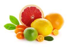 Het verse fruit van de citrusvrucht op witte achtergrond royalty-vrije stock foto's