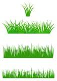 Het verse Gras van de Zomer Stock Afbeeldingen