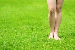 Het verse groene gras van de vrouw de benen en Stock Afbeeldingen