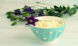 Het verse organische met de hand gemaakte kaas hangen in kaasdoek en uitstekende plaat Royalty-vrije Stock Foto's