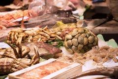 Het verse paviljoen van de vissenmarkt Royalty-vrije Stock Foto