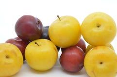 Het verse voedsel van het gedroogde pruimenfruit Stock Foto's