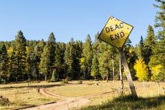 Het vertakte teken van de landwegimpasse Stock Fotografie