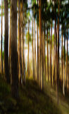 Het verticale levendige landschap van de motieboom met lichte lekabstractie Stock Foto's