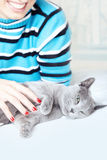 Het vertroetelen van kat Stock Fotografie