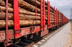 Het vervoer van de biomassa royalty-vrije stock foto