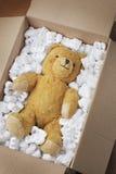 Het vervoer van de teddybeer Stock Fotografie