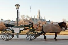 Het vervoer van Fiaker in Wenen, Oostenrijk Royalty-vrije Stock Afbeeldingen