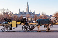 Het vervoer van Fiaker in Wenen, Oostenrijk Stock Foto
