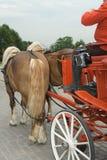 Het vervoer van het huwelijk Stock Foto