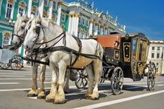 Het vervoer van het paard Stock Foto