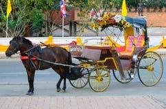 Het vervoer van het paard royalty-vrije stock afbeeldingen