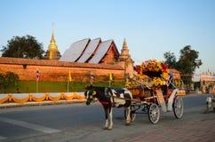 Het vervoer van het paard Royalty-vrije Stock Afbeelding
