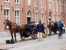 Het Vervoer van het paard in Brugge Stock Afbeelding