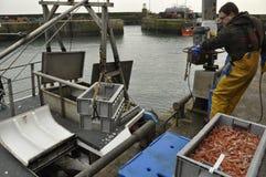 Het vervoeren in de vangst Schotland het UK Stock Foto