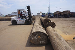 Het verwijderen van houten stralen Royalty-vrije Stock Fotografie