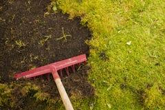 Het verwijderen van mos in gazon royalty-vrije stock fotografie