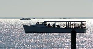Het verzamelen van Krabben op de Chesapeake Baai Stock Fotografie