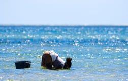 Het verzamelen van mosselen in de kust van Mozambique royalty-vrije stock afbeelding