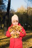 Het verzamelen zich van de herfstbladeren Stock Afbeeldingen