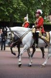 Het verzamelen zich van de Kleur, de verjaardag van de Koningin Royalty-vrije Stock Foto's