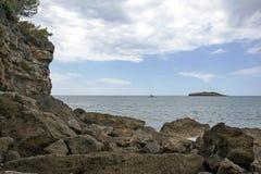 Het verzegelen langs de kust royalty-vrije stock foto's