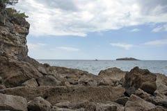 Het verzegelen langs de kust stock afbeelding