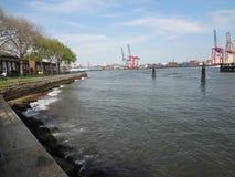 Het 2013 Verzinselfestival NYC 77 Stock Afbeeldingen