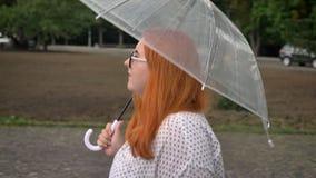 Het vette gembermeisje met glazen loopt in park in somber weer, trekt gezette paraplu, zijaanzicht stock video