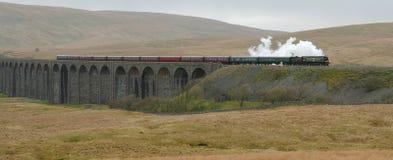 Het Viaduct van Ribblehead. Royalty-vrije Stock Foto