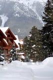 Het vieren de winter Royalty-vrije Stock Foto's