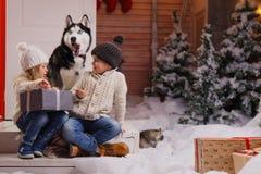 Het vieren Kerstmis met hun hond thuis de kinderen spelen met hond met verfraaide Kerstboom op de achtergrond Royalty-vrije Stock Fotografie