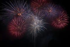 Het vieren met vuurwerk Royalty-vrije Stock Foto
