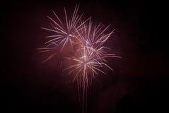 Het vieren met vuurwerk Royalty-vrije Stock Afbeeldingen