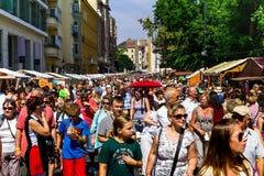 Het vieren St Stephen Dag in Boedapest Royalty-vrije Stock Foto's