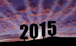 Het vieren van 2015 Royalty-vrije Stock Fotografie