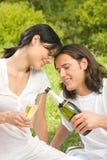 Het vieren van het paar bij picknick Royalty-vrije Stock Afbeelding