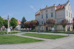 Het vierkant in Pyskowice met het stadhuis en de kolom met het standbeeld van Maagdelijke Mary Stock Afbeelding